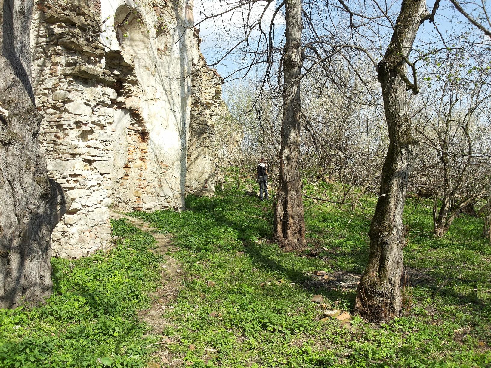 simply transylvania2